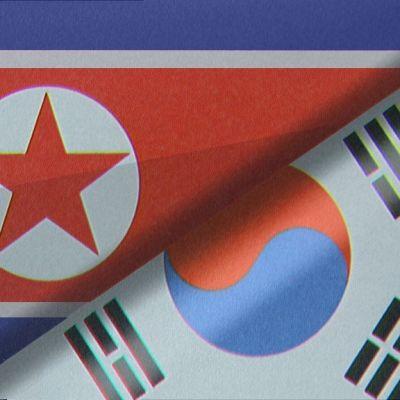 Syd- och Nordkoreas flaggor