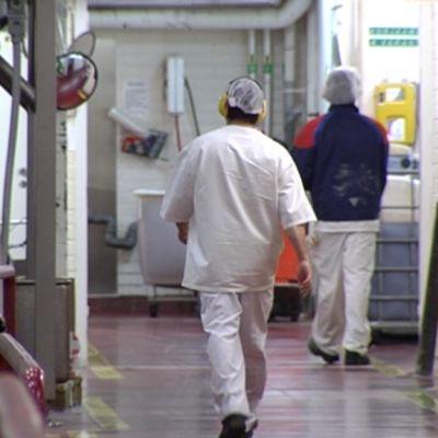 Fabiksarbetare vid livsmedelsfabrik