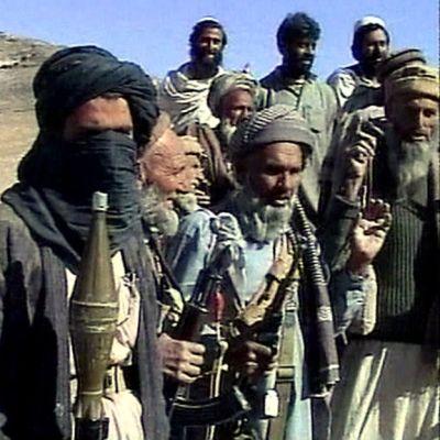 Talibaner i Nanagarhar, Afghanistan
