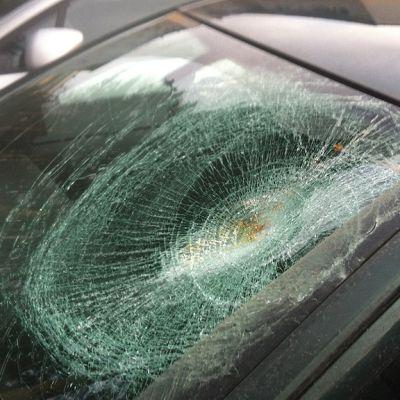 Träd har krossat vindrutan på en bil i Helsingfors