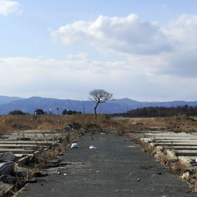 Två år efter olyckan i Fukushima