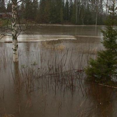 Översvämning i Vassor
