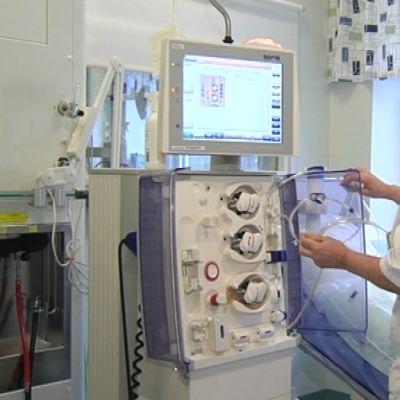 Njurskötare Merja Koponen