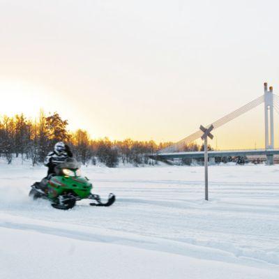 Moottorikelkkailja vauhdissa kelkkareitillä Rovaniemellä