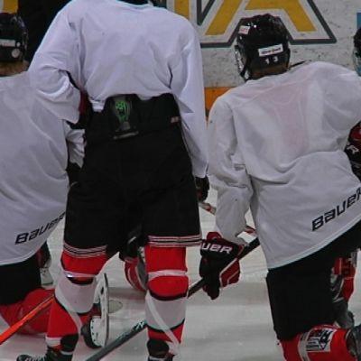 Jääkiekon pelaajia selkäpäin kameraan.