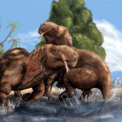 Piirroskuva kahdesta Tiarajudens eccentricus -koiraasta, jotka ovat raadelleet toisiinsa verisiä haavoja.