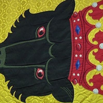 Porin lippu, vaakunakarhu