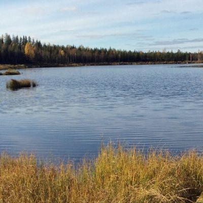 Ylä-Lumijärvi Talvivaaran  kaivosalueella.