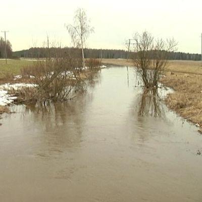Joki tulvii pellolle