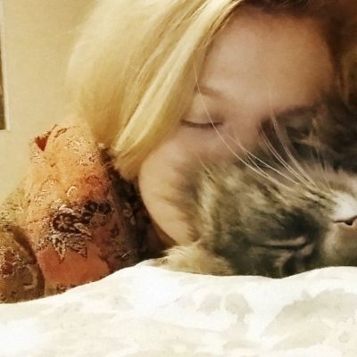 Pia löysi kuusi vuotta kadoksissa olleen Pörri-kissan Facebookista.