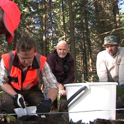 Miehiä tekemässä arkeologisia kaivauksia maastossa
