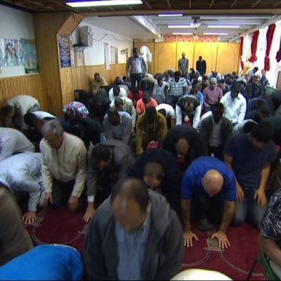 Muslimimiehiä rukoilemassa.