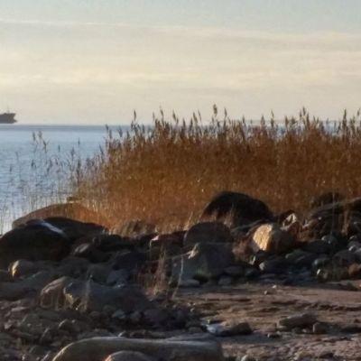Rahtilaiva lipuu maailmanmerille Oulun satamasta 14.10.2014