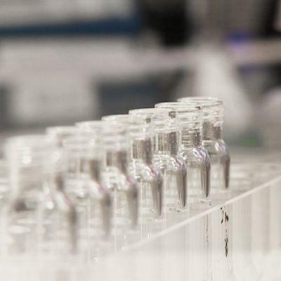 Research at Biotie Therapies: close-up image of the test tubes. (Biotien tutkimuspulloja)