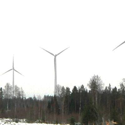 Jopa tuhat tuulivoimalaa on parhaillaan hankkeilla Pohjois-Pohjanmaalla.
