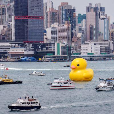 Muovinen jättiankka vedessä Hongkongin edustalla.
