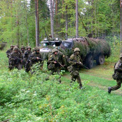 Viron pioneeripataljoonan sotilaita ja Pasi-miehistönkuljetusajoneuvo Jänedan metsissä.