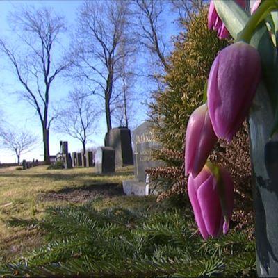 Kukkia hautakivellä
