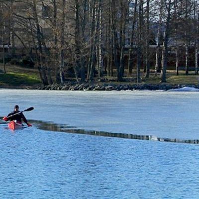 Meloja jään laidassa järvellä.