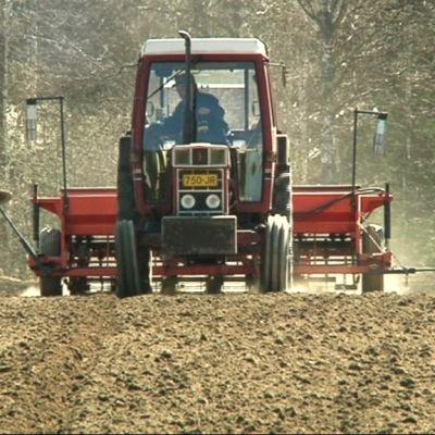 Traktori kylvötöissä pellolla