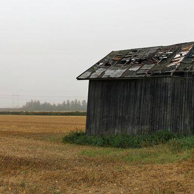 Kuvassa ränsistyvä lato pellon laidassa.