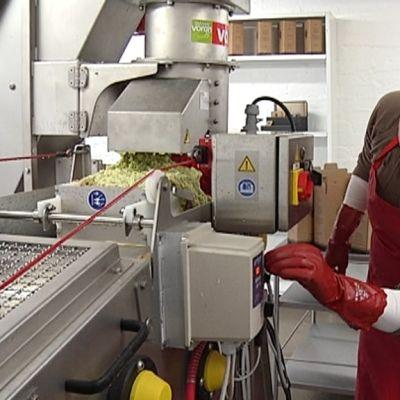 omenat mehustamo yrittäjä omena