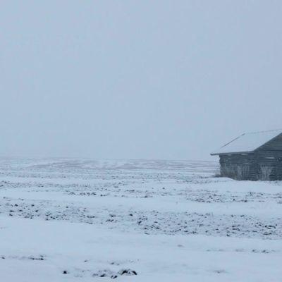 Lato lumisella pellolla.