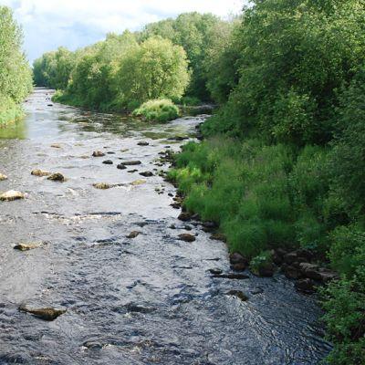Kuvassa Perhonjoki Kaustisen riippusillan kohdalla