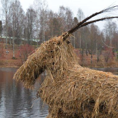 Kainuulainen kekripukki vuosimallia 2014 profiilikuvassa.