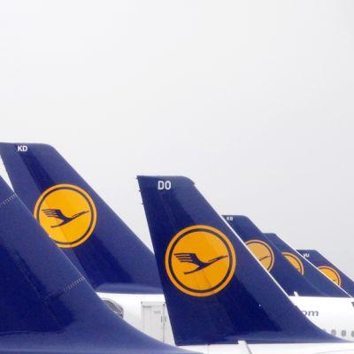 Lufthansan lentokoneita Frankfurtin lentokentällä Saksassa helmikuussa.