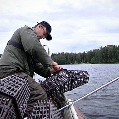 Marko Paloniemi koeravustaa Lappajärvellä.