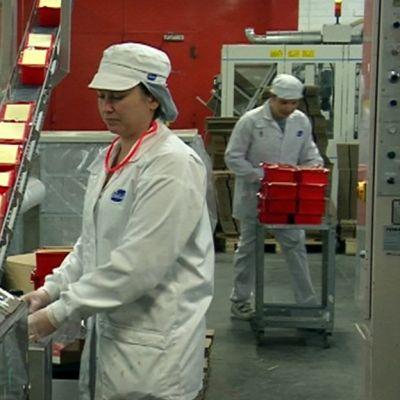 Juustoa pakataan Lapinlahden Valion juustolassa.