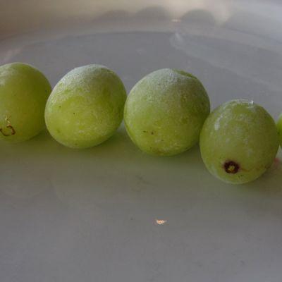 Kuvassa pakastettuja viinirypäleitä
