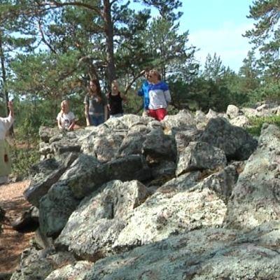 Kiviä Sammallahdenmäellä.