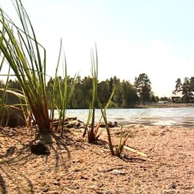 Lämsänjärvi on tyhjentynyt uimareista, sillä järvelle asetettiin perjantaina uimakielto.