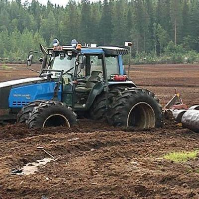 Sininen traktori vajonnut turvesuohon jyrsin perässä. Sateen kastelemat suot eivät kestä traktorilla työskentelyä.