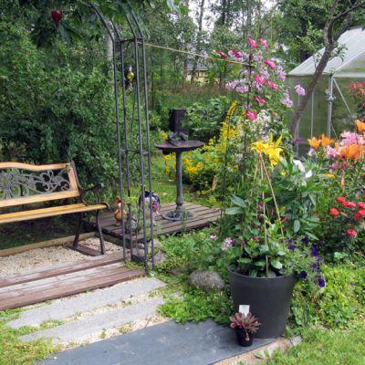 Kuva Irma Loukasmäen puutarhasta Luodosta.