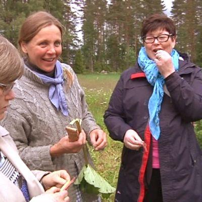 Merja Hartikainen MTT:ltä, Outileena Uotila Korteniemestä ja kotitalousopettaja Anneli Rantamäki Riihimäeltä maistelevat vanhaa kunnon raparperiä.