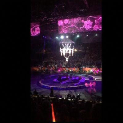 Kännykkäkuvaa sirkuksesta