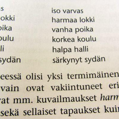 Kuvassa sivu kielioppikirjasta