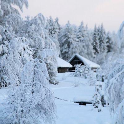 Talvi Vikakönkäällä