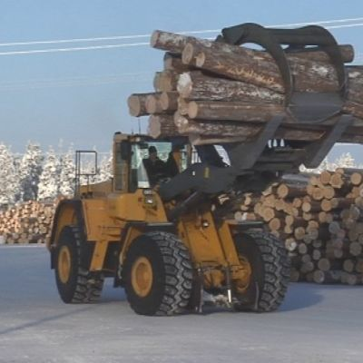 Sahat. Pölkky Oy. Suomalaiset sahat eivät lastaa tällä hetkellä kotimaassa Egyptiin lähtevää puutavaraa.