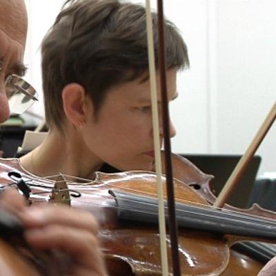 Mikkelin kaupunginorkesteri