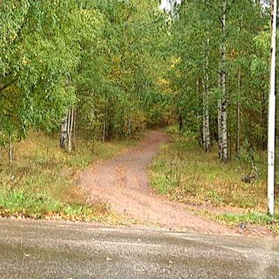 Vuoksenniskan koulupolku
