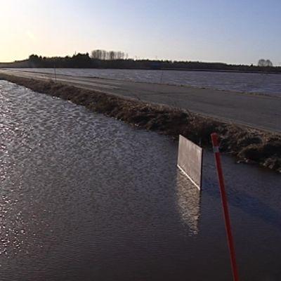 Tulvaa Ilmajoella 20.4.2013.