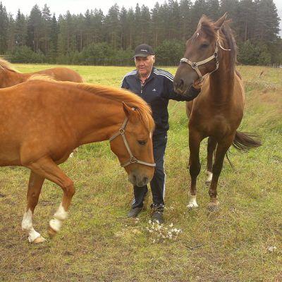 Soinilainen hevosmies Aarne Halla-Aho ravuri Veli Vinkeen (etummaisena) kanssa laitumella.