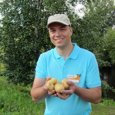 Heikki Markus käsissään perunoita