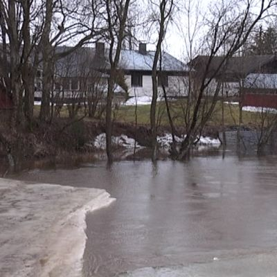 Tulva Kyrönjoessa Ilmajoella Nikkolan kohdalla 17.4.2013.