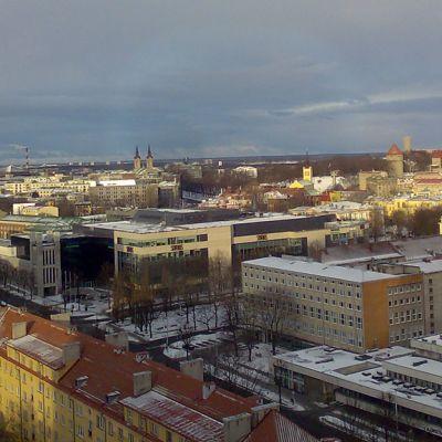 Kuvassa näkymä Tallinnan keskustasta ylhäältä katsottuna , taloja ja  kirkontorneja.