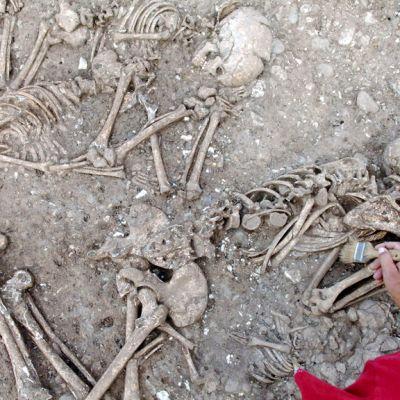 Tutkija putsaa pensselillä kivikautista hautaa Saksan Eulaussa